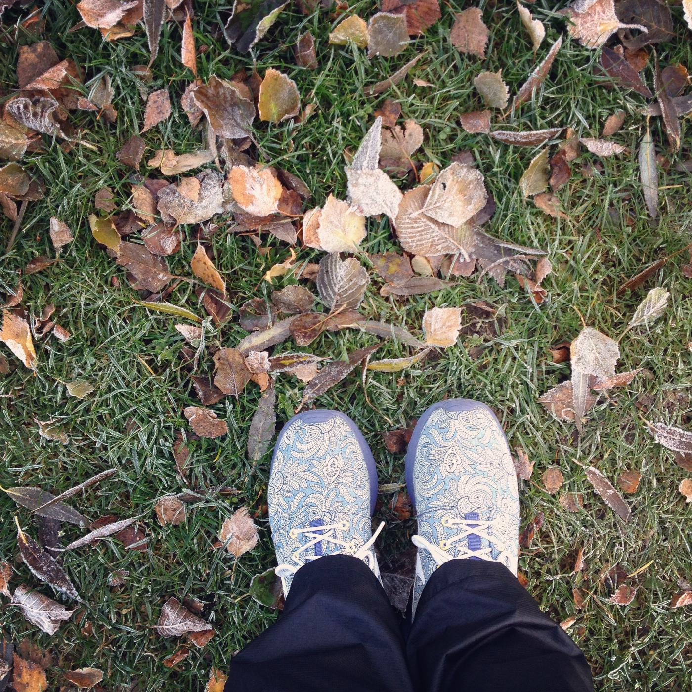 frosty-leaves-walk.JPG
